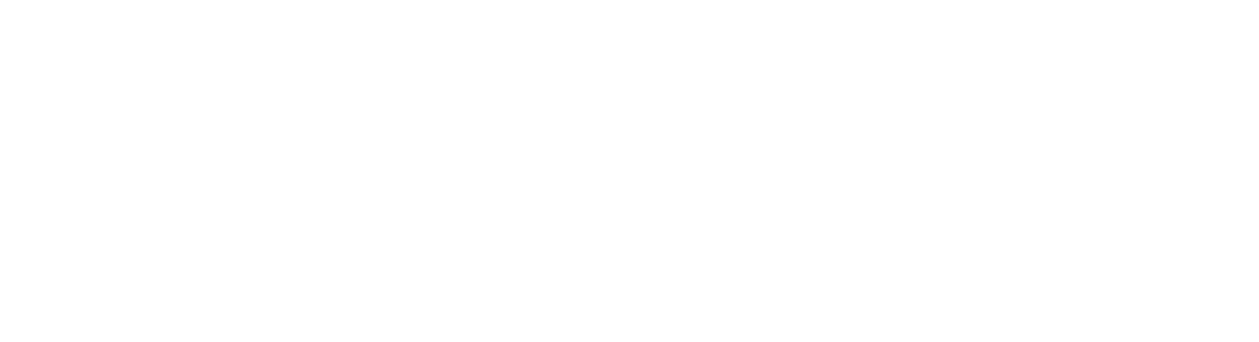 24 Hour Mold Removal Logo White